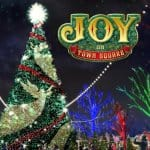 Silver Dollar City's 8-Story Tall Christmas Tree!